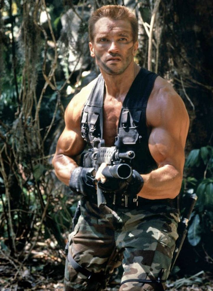 ScreenHub-Movie-Predator Dutch