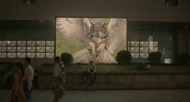 Her Owl.jpg