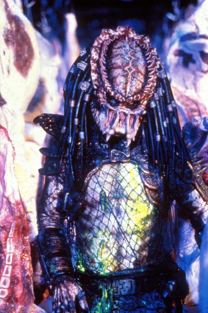 ScreenHub-Movie-Predator2